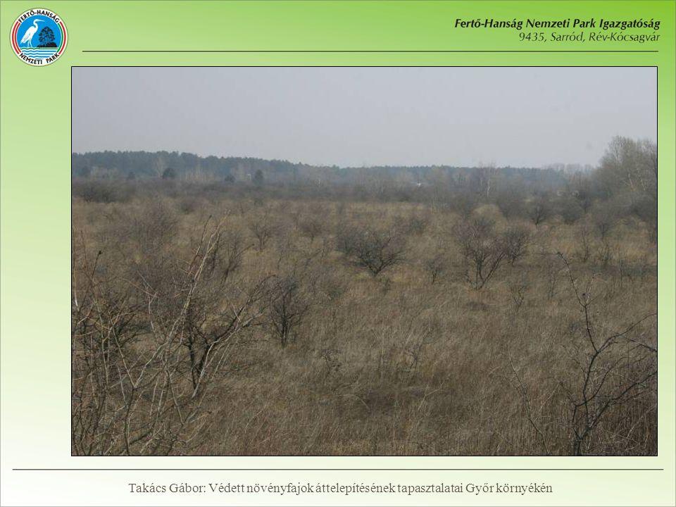 Ültetési terület előkészítése  Cserjeirtás  Földmunkák  Kaszálás és szártépőzés  Mechanikai és vegyszeres gyomirtás Takács Gábor: Védett növényfajok áttelepítésének tapasztalatai Győr környékén