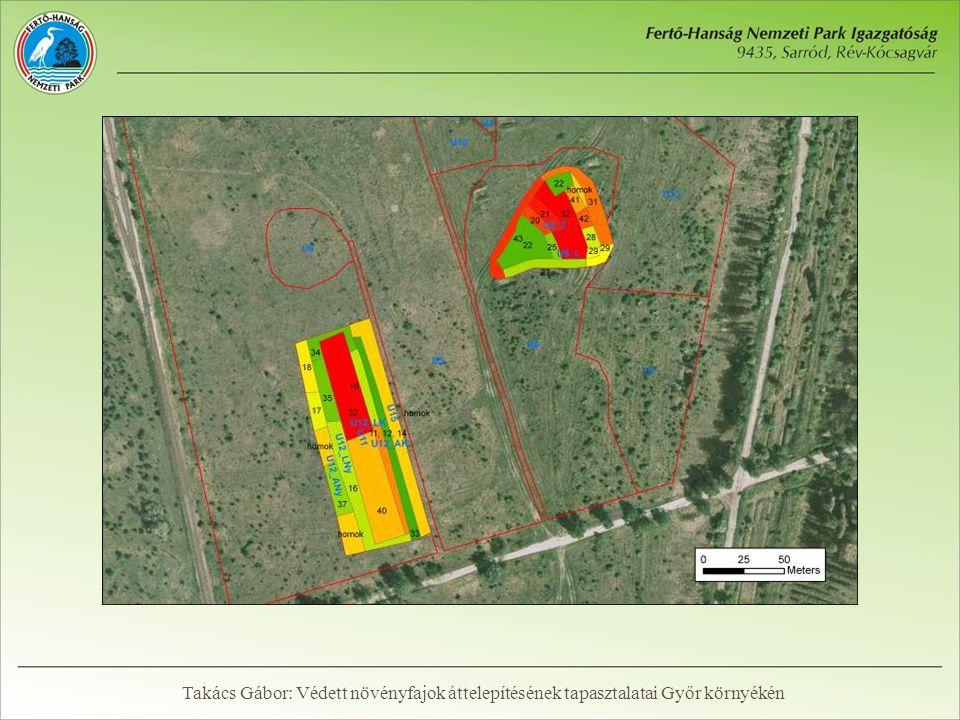 Végeredmény  Egyedi ültetéssel: 14694 tő  Gyeptéglás telepítéssel: ~77000 tő  Összesen: kb.
