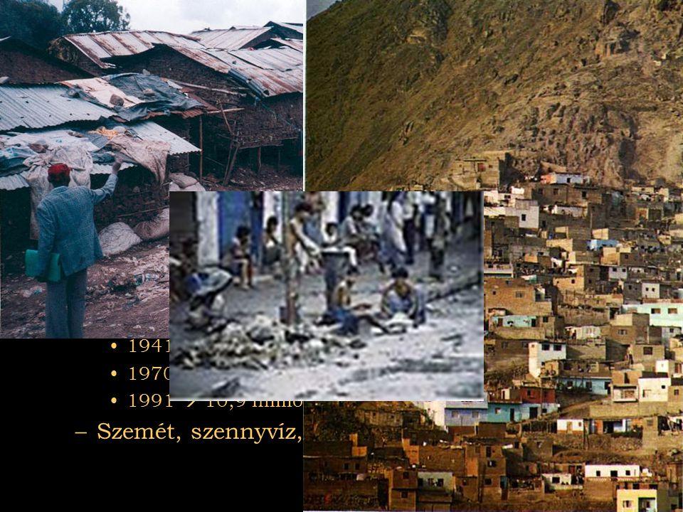2007.08.03Az el nem kötelezettek Városok •Dél-Amerika: Peru fővárosa Lima •Ipar 80% •GNP 40% •Állami alkalmazottak 70% •Ázsia: Calcutta •1931  2,5 mi