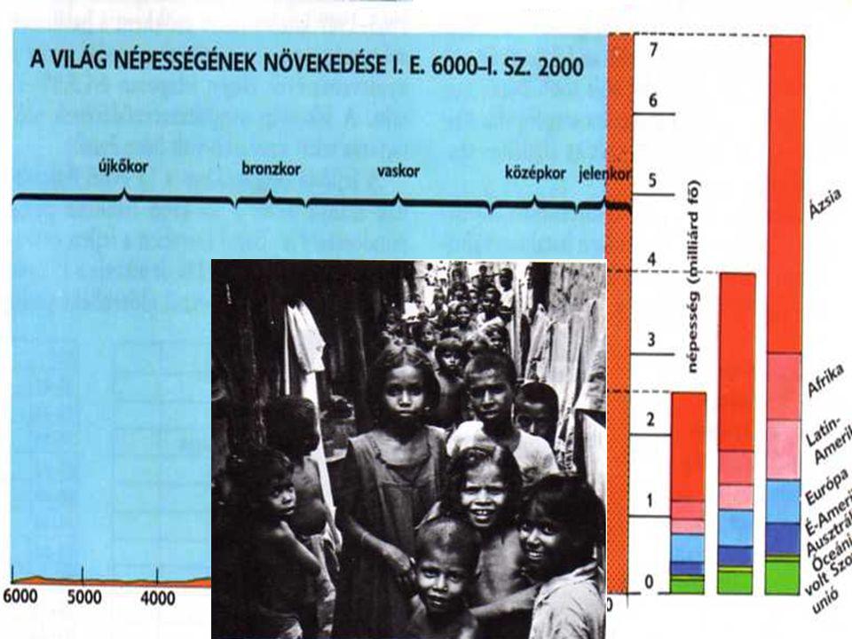 2007.08.03Az el nem kötelezettek Népesség •Népesség robbanás –Oka: •világkereskedelem és gyógyszerek megjelenése •Népesség várható élettartalma –Szüle