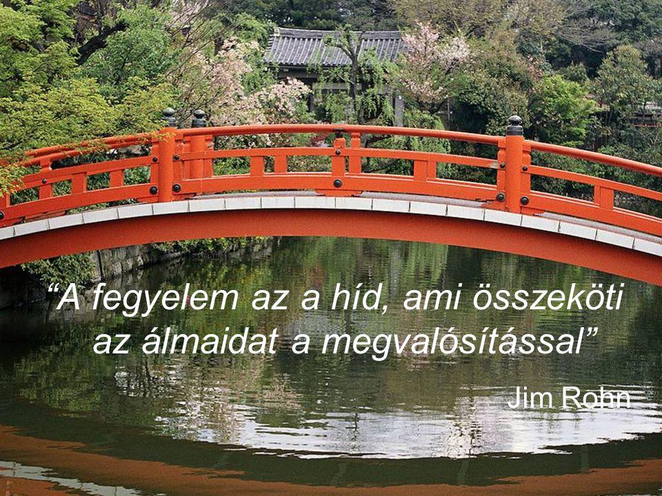"""11 """"A fegyelem az a híd, ami összeköti az álmaidat a megvalósítással"""" Jim Rohn"""