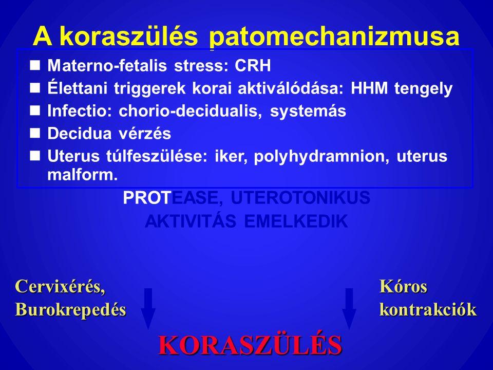 A koraszülés patomechanizmusa  Materno-fetalis stress: CRH  Élettani triggerek korai aktiválódása: HHM tengely  Infectio: chorio-decidualis, system