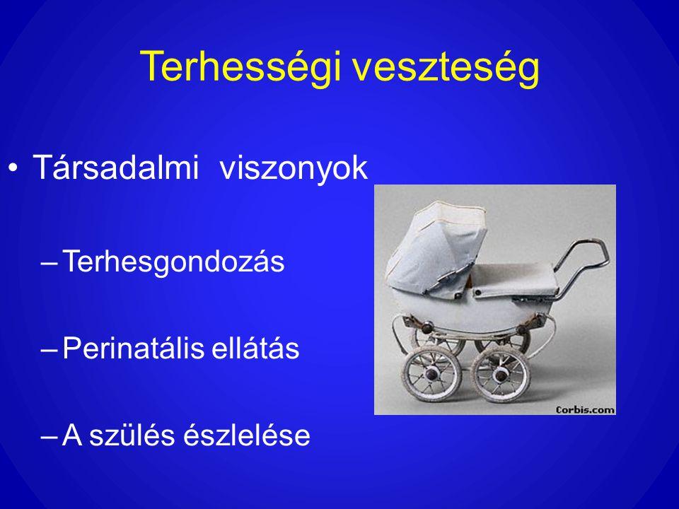 Terhességi veszteség •Társadalmi viszonyok –Terhesgondozás –Perinatális ellátás –A szülés észlelése