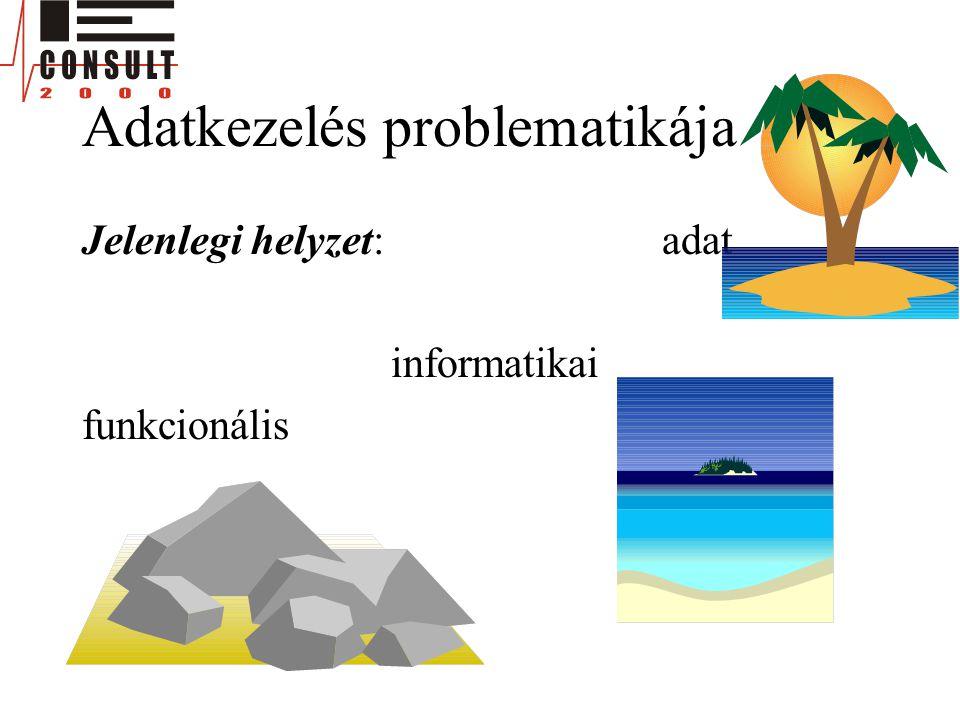 Adatkezelés problematikája Jelenlegi helyzet: adat informatikai funkcionális
