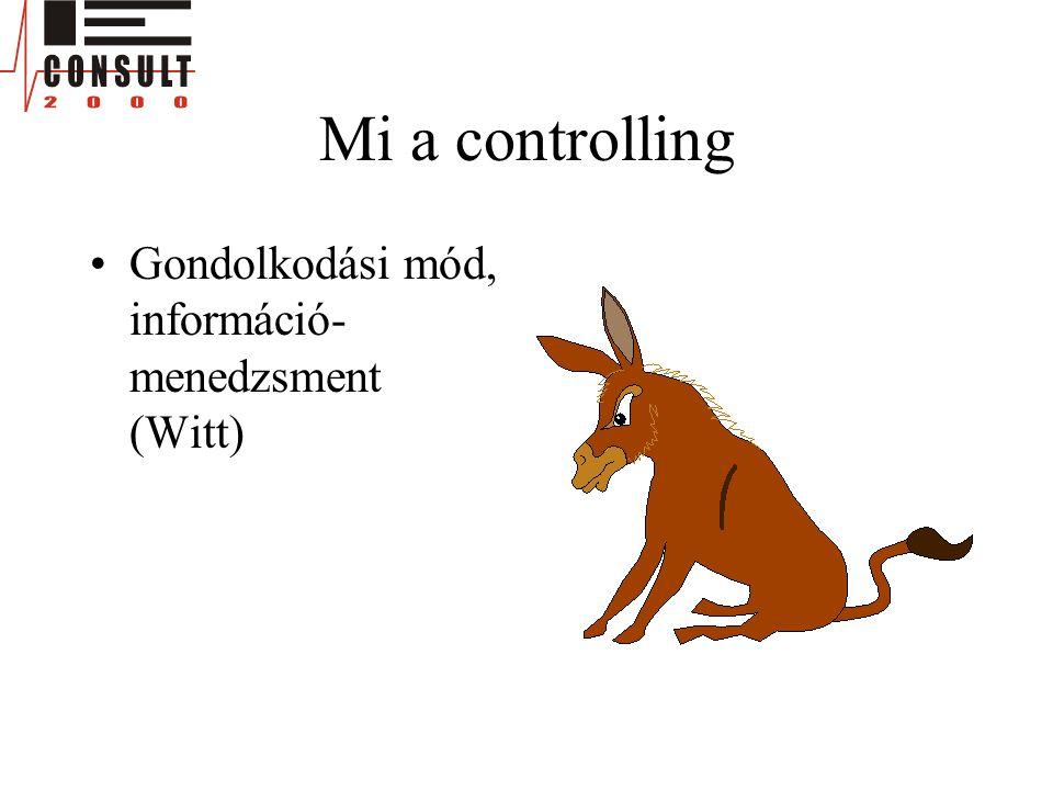 Mi a controlling •Gondolkodási mód, információ- menedzsment (Witt)