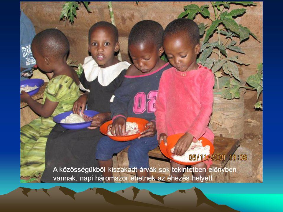 A közösségükből kiszakadt árvák sok tekintetben előnyben vannak: napi háromszor ehetnek az éhezés helyett