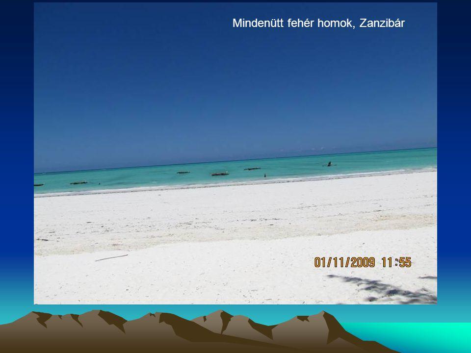 Mindenütt fehér homok, Zanzibár
