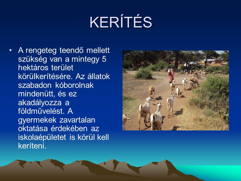 KERÍTÉS •A rengeteg teendő mellett szükség van a mintegy 5 hektáros terület körülkerítésére.