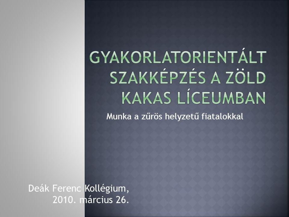 Munka a zűrös helyzetű fiatalokkal Deák Ferenc Kollégium, 2010. március 26.