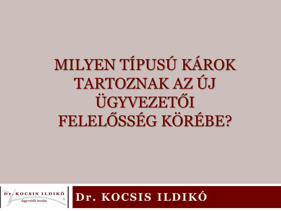 Tudta Ön az új Ptk-ról. 1959-ig nem létezett magyar magánjogi törvénykönyv, így az új Ptk.