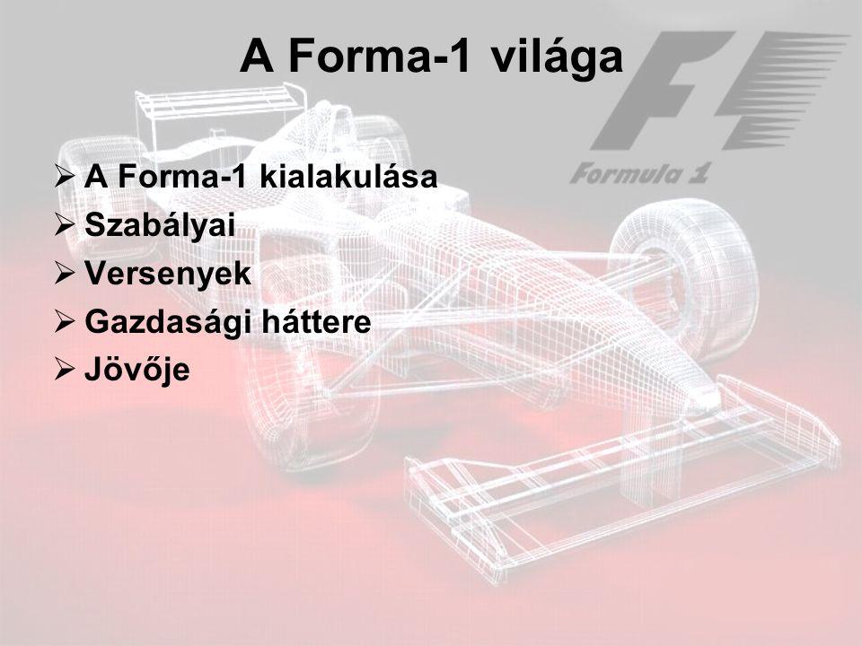 A Forma-1 világa  A Forma-1 kialakulása  Szabályai  Versenyek  Gazdasági háttere  Jövője
