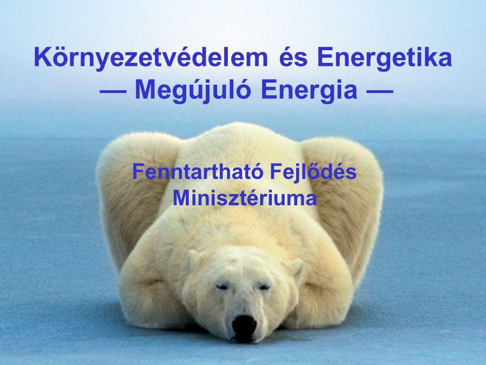  Hazai  EU  Összesen  KEOP: Megújuló energiahordozóval történő hő- és villamosenergia- termelés/felhasználás  15  42,8  57,8  KEOP: Bioüzemanyag-előállító közép- és nagykapacitású üzemek  1,2  3,8 55  EHA: Energiatakarékossági Hitel Alap  4,5  ZBR: Zöld Beruházási Rendszer  ~20  NEP: Nemzeti Energiatakarékossági Program  26  ROP Regionális Operatív Programok  2,5  7,5  10  Normatív területalapú támogatások (FVM)  100-120  EMVA Európai Mezőgazdasági és Vidékfejlesztési Alap  4-6  11-19  15-25  Összesen:  73,2-75,2  165,1- 193,1  238,3- 268,3 Ösztönzők, források (mrd Ft)