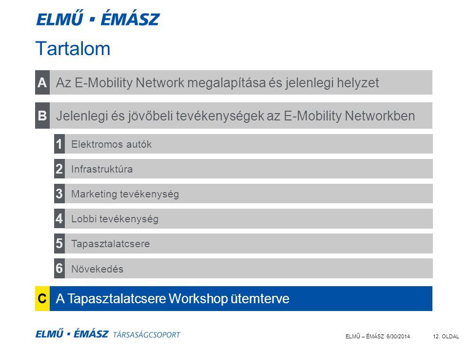 ELMŰ – ÉMÁSZ 6/30/201412. OLDAL Tartalom Az E-Mobility Network megalapítása és jelenlegi helyzet CA Tapasztalatcsere Workshop ütemterve BJelenlegi és
