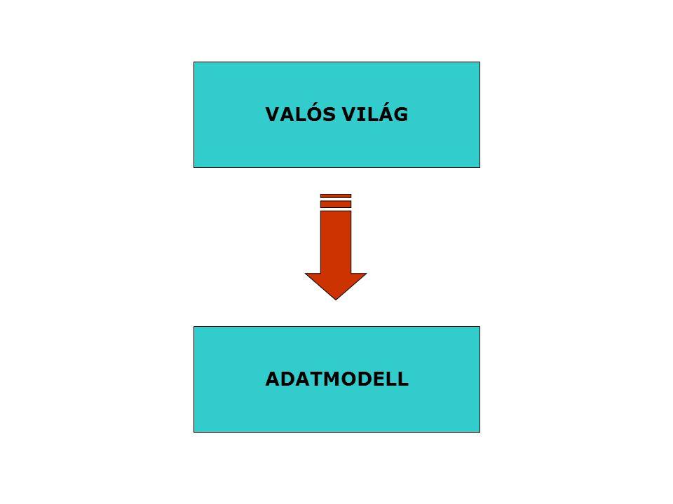 VALÓS VILÁG ADATMODELL