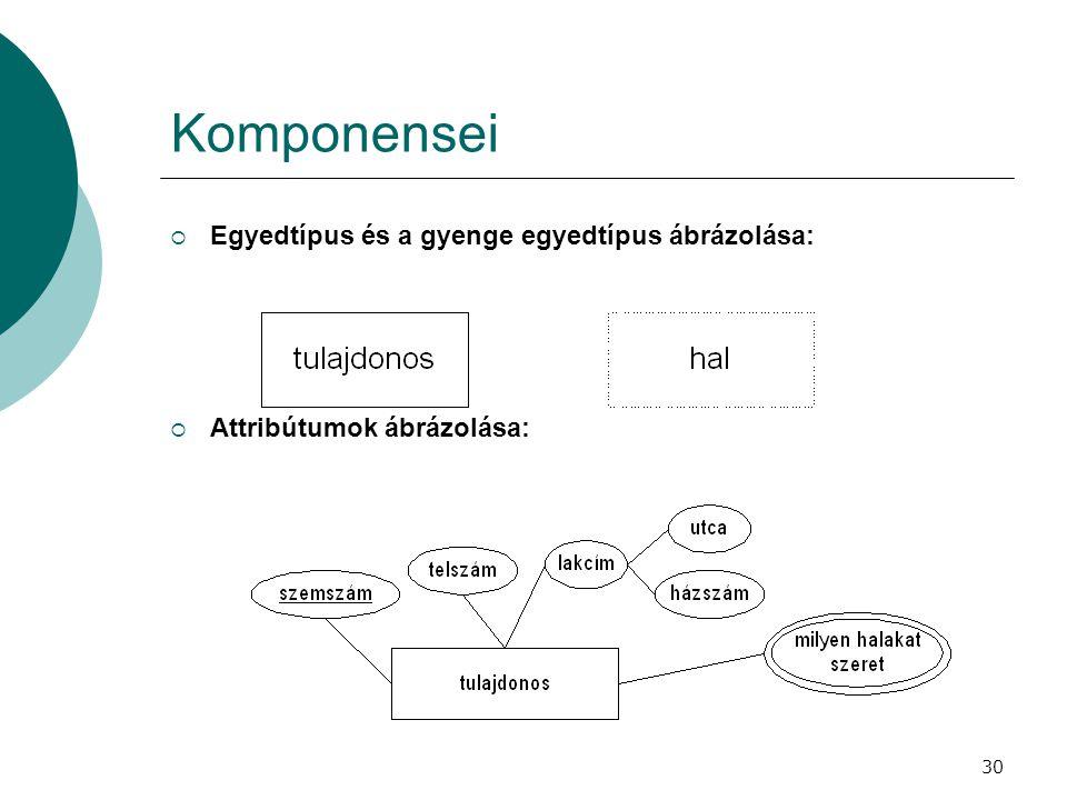 30 Komponensei  Egyedtípus és a gyenge egyedtípus ábrázolása:  Attribútumok ábrázolása: