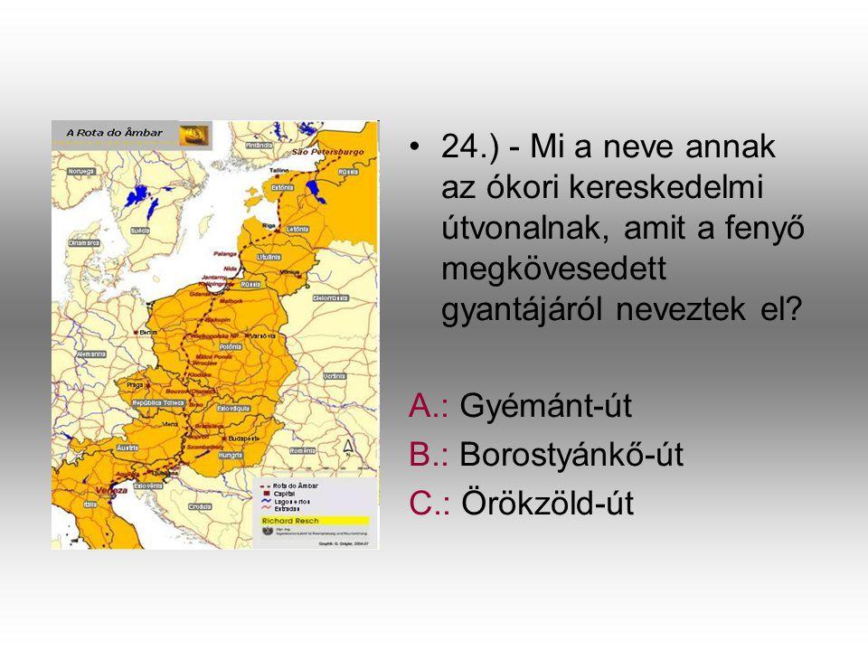•2•24.) - Mi a neve annak az ókori kereskedelmi útvonalnak, amit a fenyő megkövesedett gyantájáról neveztek el? A.: Gyémánt-út B.: Borostyánkő-út C.: