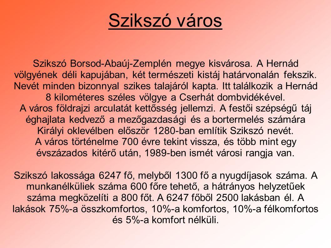 Szikszó város Szikszó Borsod-Abaúj-Zemplén megye kisvárosa. A Hernád völgyének déli kapujában, két természeti kistáj határvonalán fekszik. Nevét minde