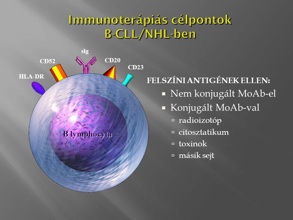 Immunoterápiás célpontok B-CLL/NHL-ben FELSZÍNI ANTIGÉNEK ELLEN:  Nem konjugált MoAb-el  Konjugált MoAb-val  radioizotóp  citosztatikum  toxinok