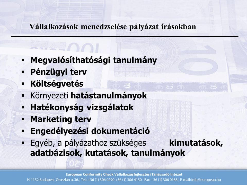  Megvalósíthatósági tanulmány  Pénzügyi terv  Költségvetés  Környezeti hatástanulmányok  Hatékonyság vizsgálatok  Marketing terv  Engedélyezési dokumentáció  Egyéb, a pályázathoz szükséges kimutatások, adatbázisok, kutatások, tanulmányok Vállalkozások menedzselése pályázat írásokban