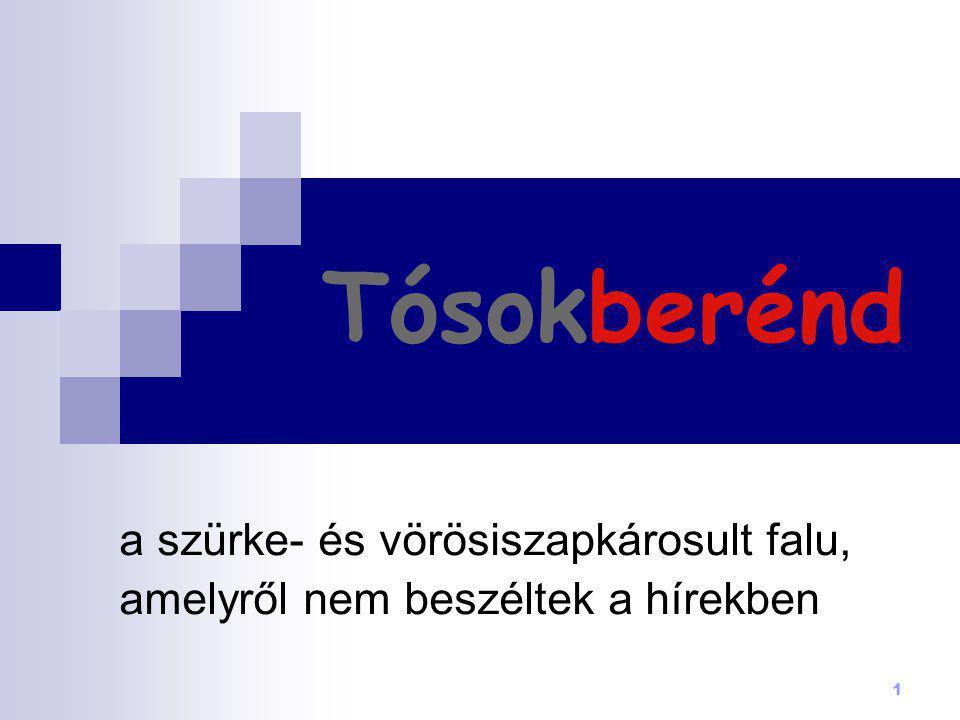 2 1985-1988 között elterelték a Torna patakot, áthelyezték a vasútvonal egy szakaszát, lebontották a több mint száz éves tósokberéndi vasútállomást