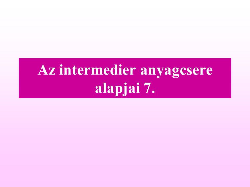 Az intermedier anyagcsere alapjai 7.