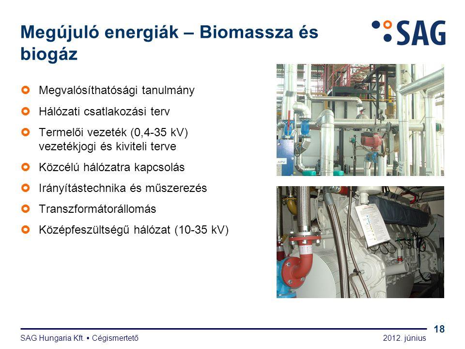 2012. június SAG Hungaria Kft.  Cégismertető 18 Megújuló energiák – Biomassza és biogáz  Megvalósíthatósági tanulmány  Hálózati csatlakozási terv 