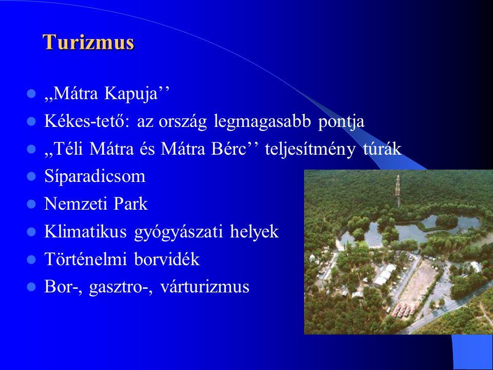 Turizmus ,,Mátra Kapuja''  Kékes-tető: az ország legmagasabb pontja ,,Téli Mátra és Mátra Bérc'' teljesítmény túrák  Síparadicsom  Nemzeti Park  Klimatikus gyógyászati helyek  Történelmi borvidék  Bor-, gasztro-, várturizmus