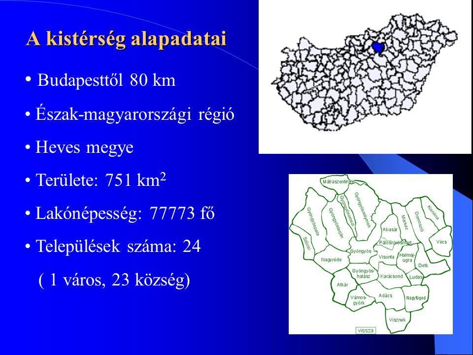 A kistérség alapadatai • Budapesttől 80 km • Észak-magyarországi régió • Heves megye • Területe: 751 km 2 • Lakónépesség: 77773 fő • Települések száma: 24 ( 1 város, 23 község)