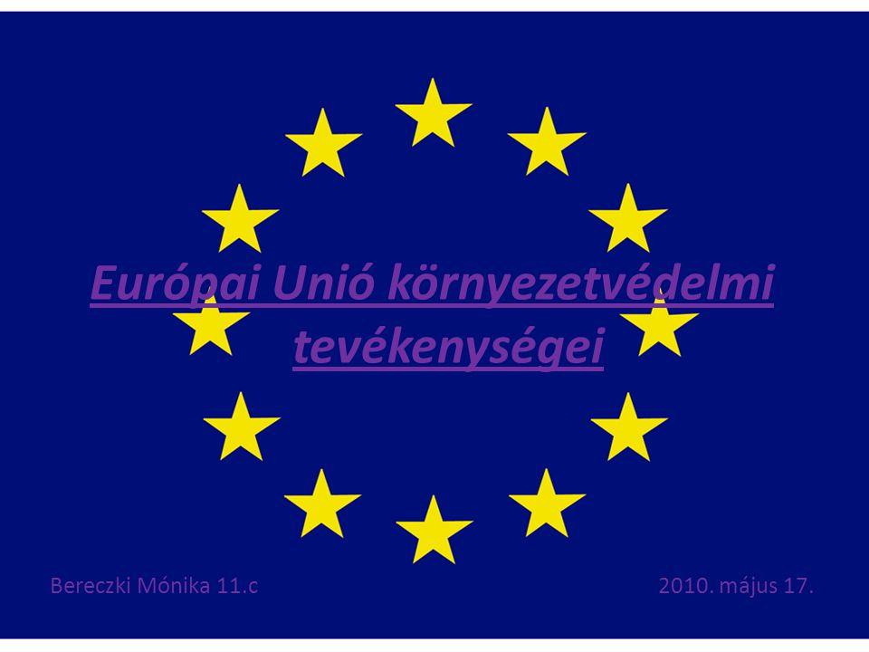 Európai Unió környezetvédelmi tevékenységei Bereczki Mónika 11.c2010. május 17.