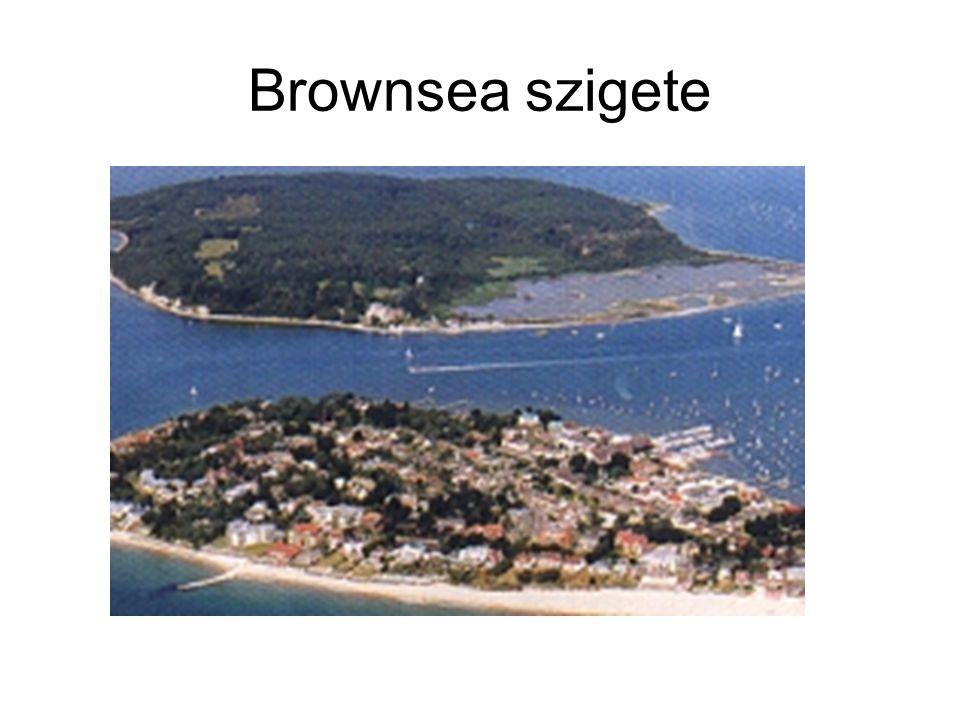 Brownsea szigete