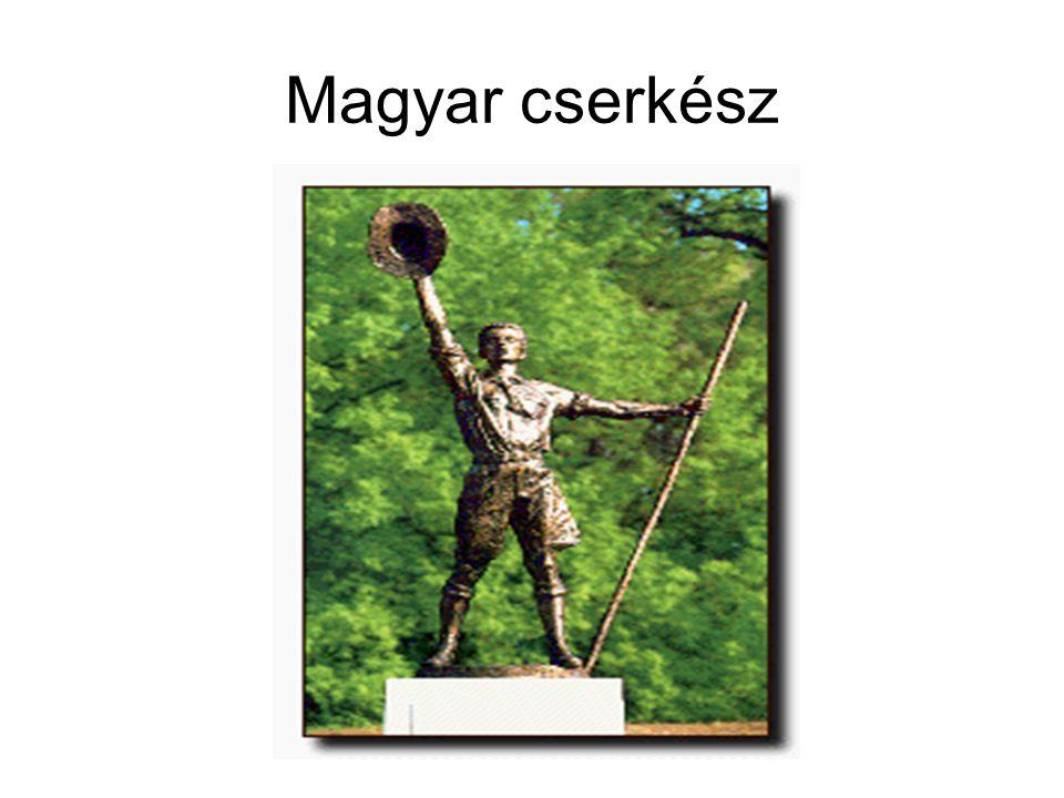 Magyar cserkész