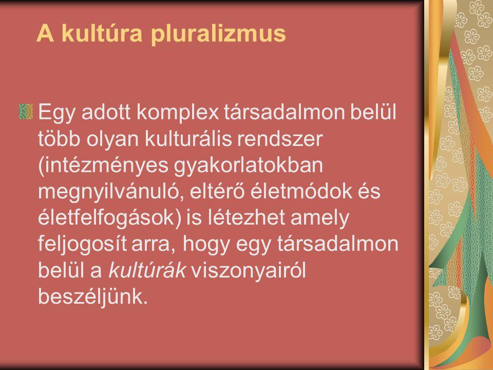 A kultúra pluralizmus Egy adott komplex társadalmon belül több olyan kulturális rendszer (intézményes gyakorlatokban megnyilvánuló, eltérő életmódok é