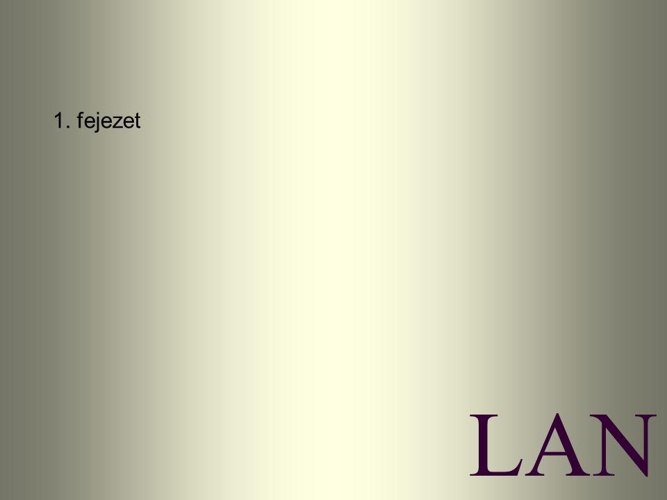 LAN 1. fejezet