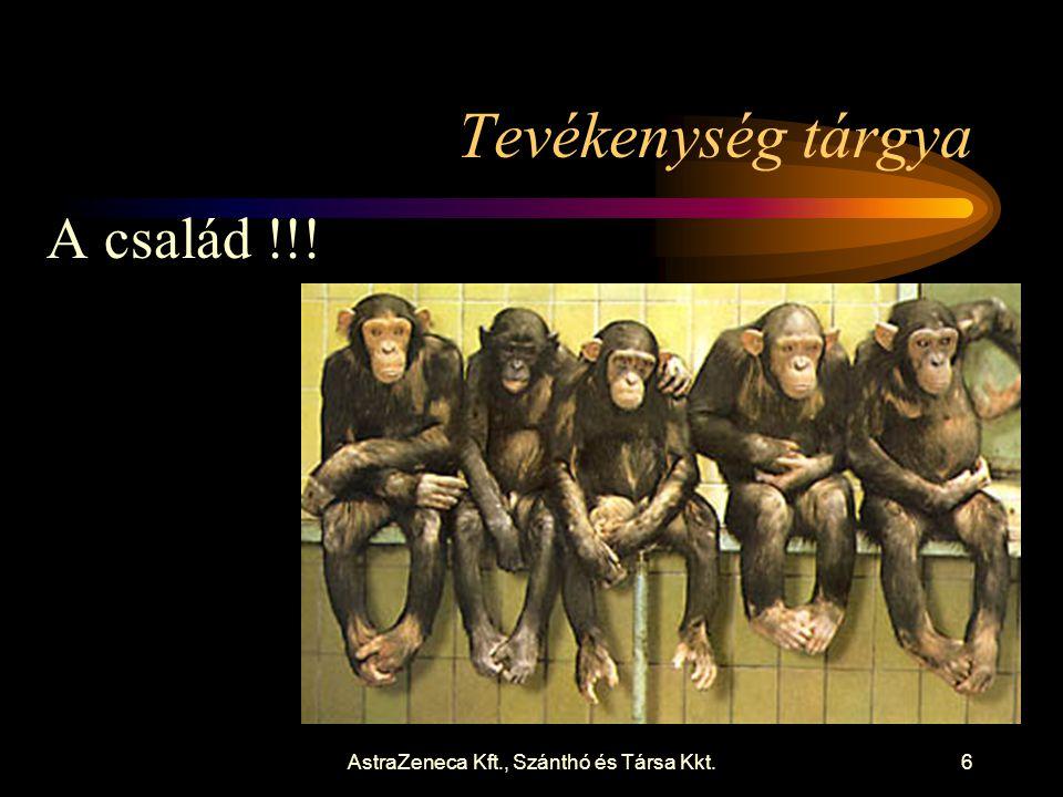 AstraZeneca Kft., Szánthó és Társa Kkt.7 Cél Önálló, egészségügyre csak minimálisan szoruló család