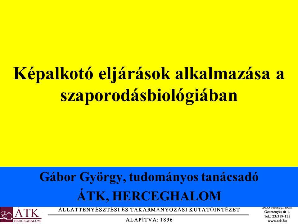 Képalkotó eljárások alkalmazása a szaporodásbiológiában Gábor György, tudományos tanácsadó ÁTK, HERCEGHALOM
