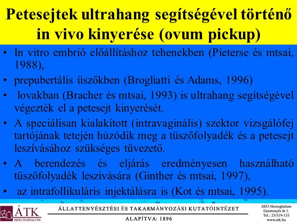 Petesejtek ultrahang segítségével történő in vivo kinyerése (ovum pickup) •In vitro embrió előállításhoz tehenekben (Pieterse és mtsai, 1988), •prepub