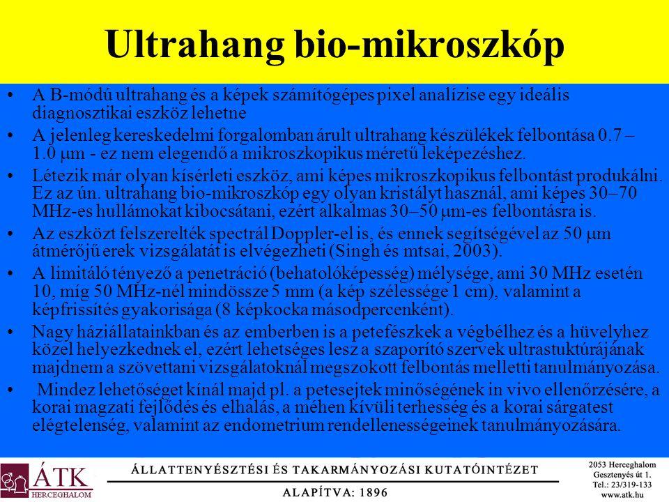 Ultrahang bio-mikroszkóp •A B-módú ultrahang és a képek számítógépes pixel analízise egy ideális diagnosztikai eszköz lehetne •A jelenleg kereskedelmi
