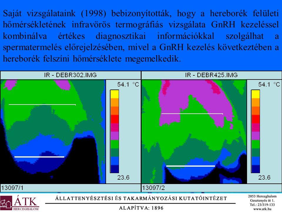 Saját vizsgálataink (1998) bebizonyították, hogy a hereborék felületi hőmérsékletének infravörös termográfiás vizsgálata GnRH kezeléssel kombinálva ér