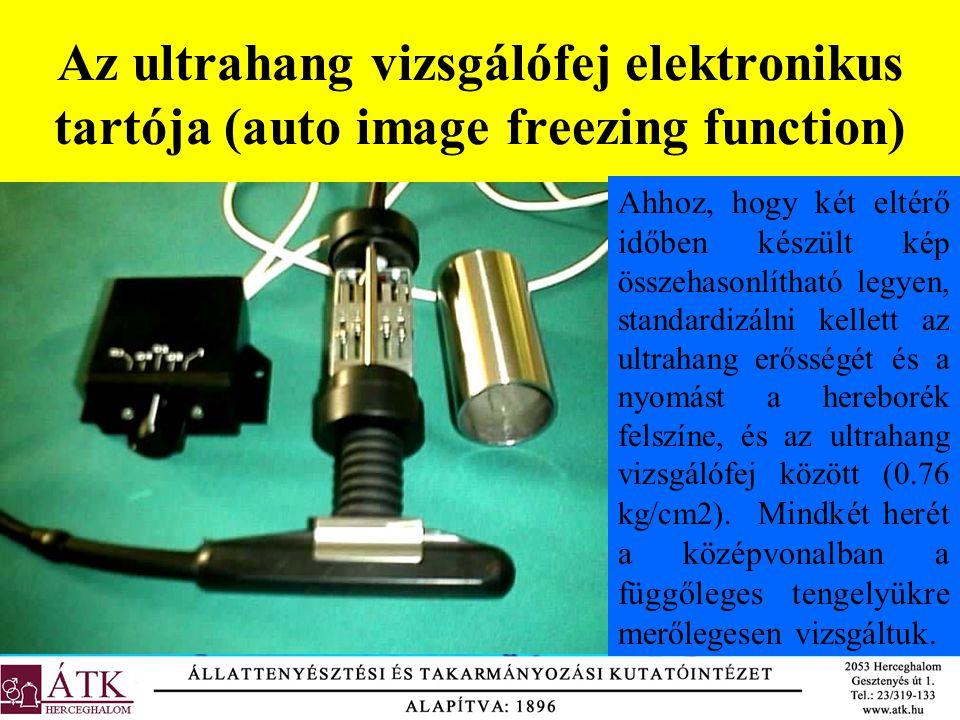 Az ultrahang vizsgálófej elektronikus tartója (auto image freezing function) Ahhoz, hogy két eltérő időben készült kép összehasonlítható legyen, stand