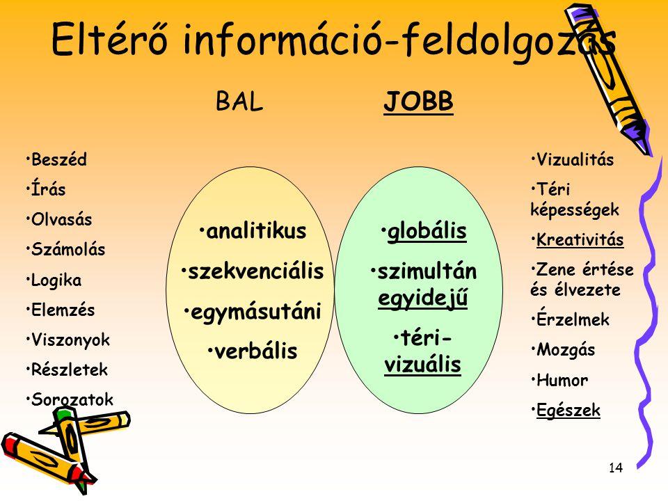 14 BALJOBB •analitikus •szekvenciális •egymásutáni •verbális •globális •szimultán egyidejű •téri- vizuális •Beszéd •Írás •Olvasás •Számolás •Logika •E