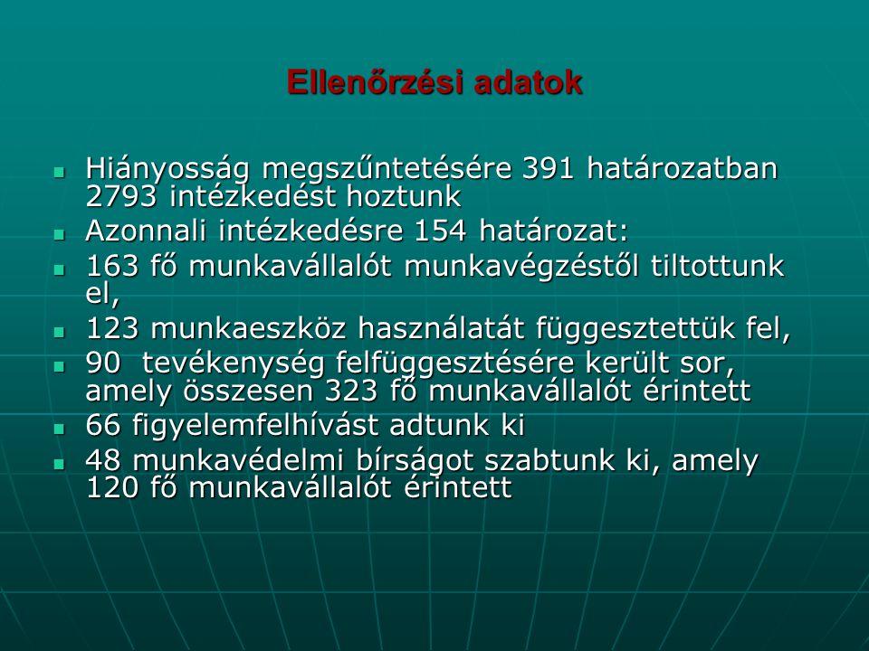 Ellenőrzési adatok  Hiányosság megszűntetésére 391 határozatban 2793 intézkedést hoztunk  Azonnali intézkedésre 154 határozat:  163 fő munkavállaló