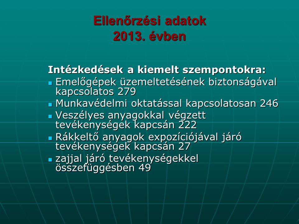 Ellenőrzési adatok 2013. évben Intézkedések a kiemelt szempontokra:  Emelőgépek üzemeltetésének biztonságával kapcsolatos 279  Munkavédelmi oktatáss