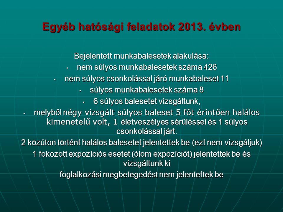 Egyéb hatósági feladatok 2013. évben Bejelentett munkabalesetek alakulása: • nem súlyos munkabalesetek száma 426 • nem súlyos csonkolással járó munkab