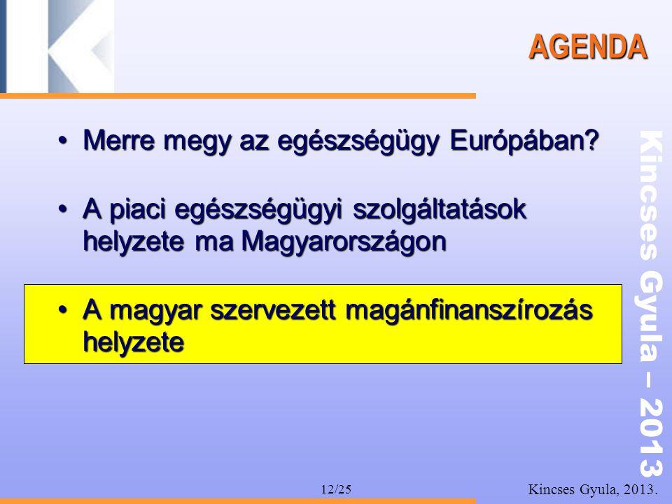 Kincses Gyula – 2013 Kincses Gyula, 2013. 12/25 AGENDA •Merre megy az egészségügy Európában? •A piaci egészségügyi szolgáltatások helyzete ma Magyaror