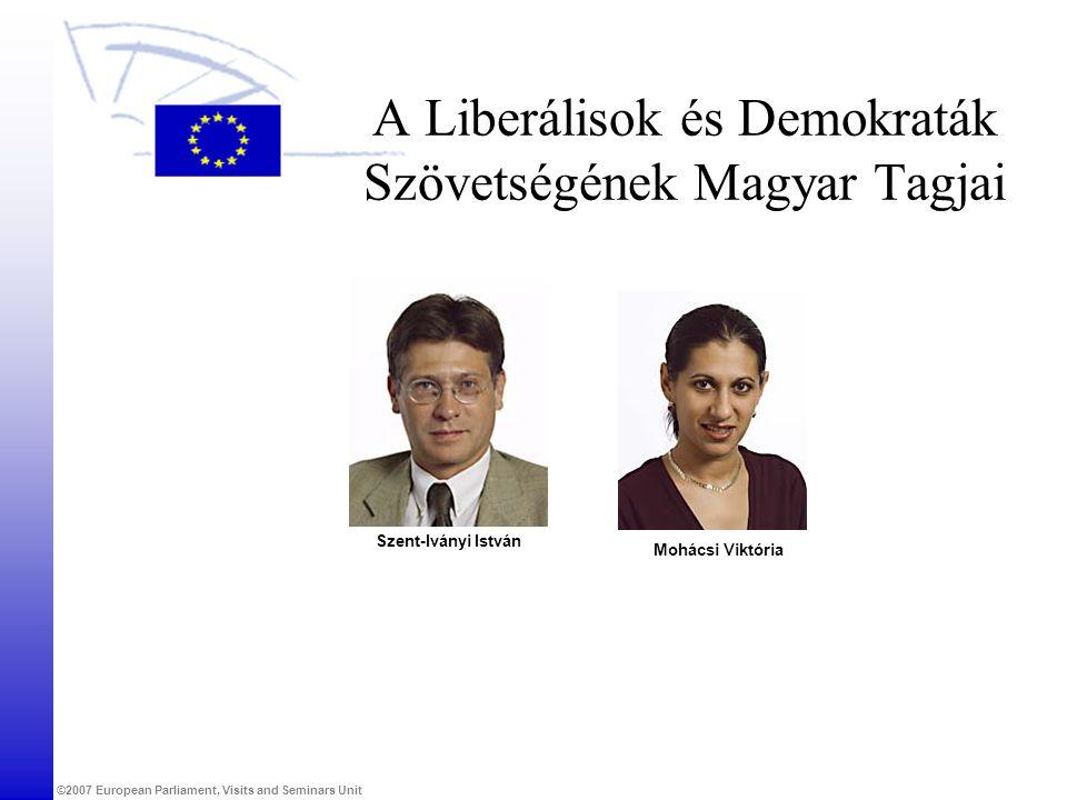 ©2007 European Parliament, Visits and Seminars Unit A Liberálisok és Demokraták Szövetségének Magyar Tagjai Szent-Iványi István Mohácsi Viktória