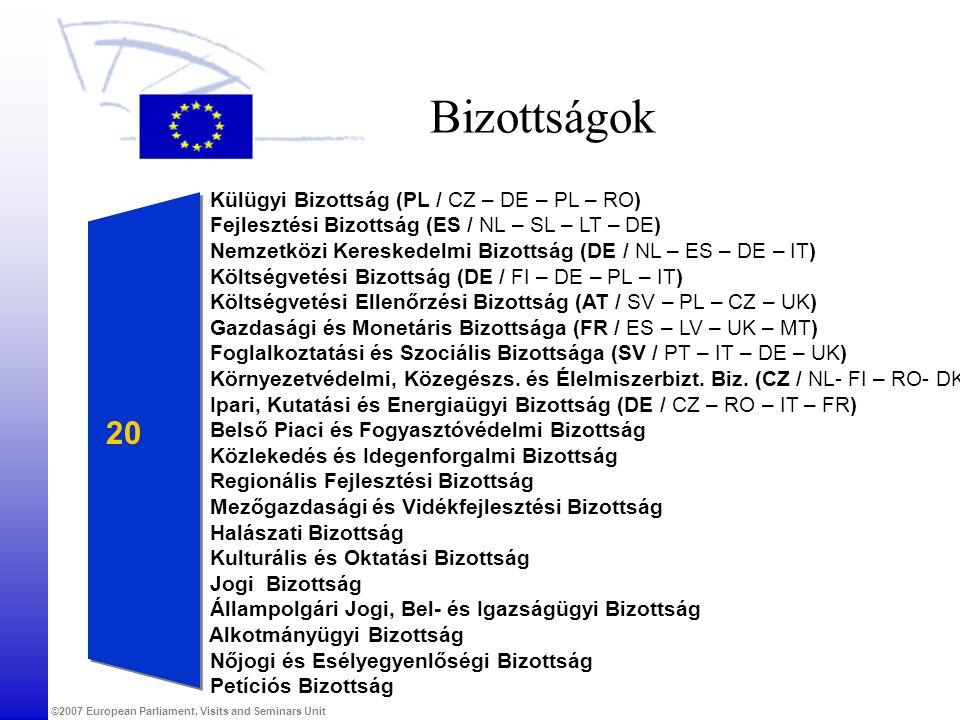 ©2007 European Parliament, Visits and Seminars Unit Bizottságok Külügyi Bizottság (PL / CZ – DE – PL – RO) Fejlesztési Bizottság (ES / NL – SL – LT –