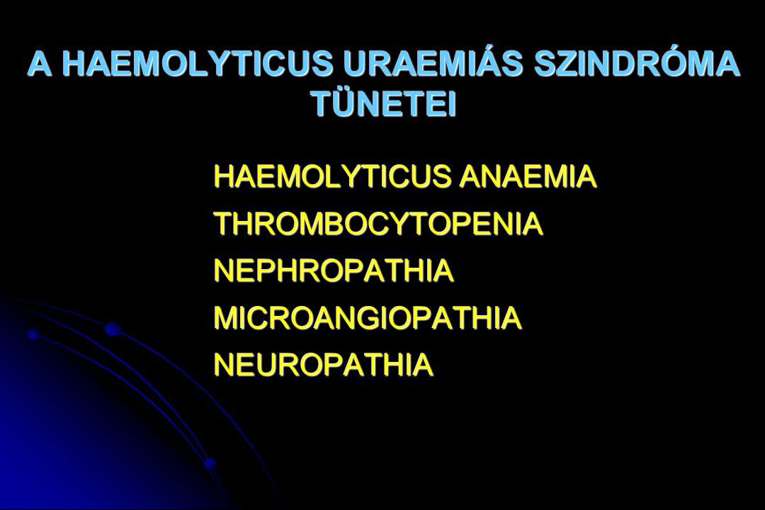 Thromboticus thrombocytopeniás purpura   Láz   haemolyticus anaemia, thrombocytopeniás purpura, fluktuáló neurológiai zavarok aszinkron manifesztációval   kezdetben neurológiai tünetek   az agyi érintettség a thromboticus occlusio következménye   uremia viszonylag ritka, gyakori haematuria, proteinuria   leukocytosis, balra tolt vérkép   gyermekek esetében – a felnőttekhez képest – elvétve fordul elõ