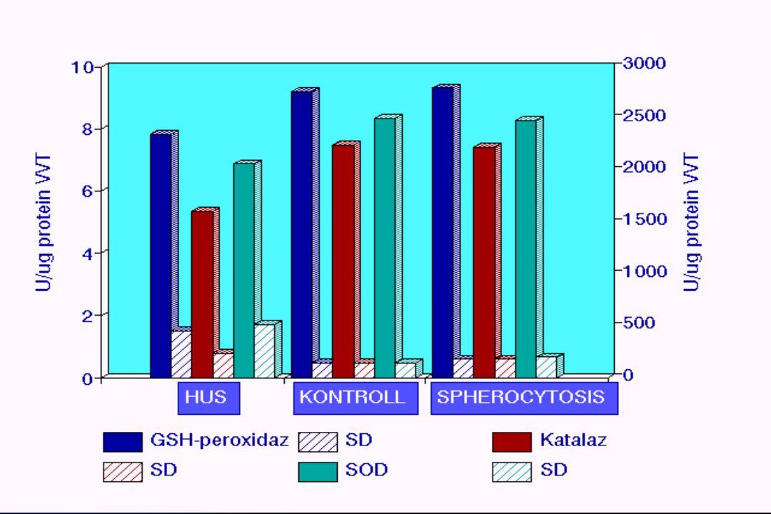 A haemolyticus uraemiás szindróma patomechanizmusa Verotoxin (E.