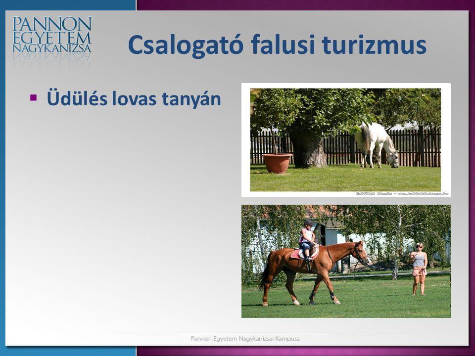 Csalogató falusi turizmus  Üdülés lovas tanyán