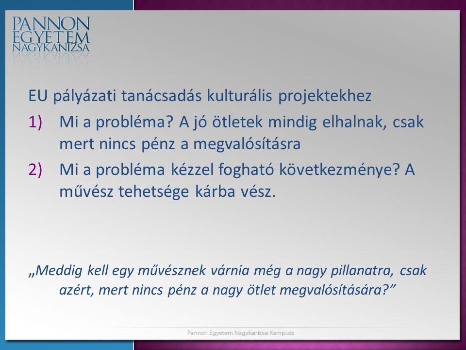 EU pályázati tanácsadás kulturális projektekhez 1)Mi a probléma.